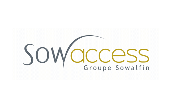 M & A Strategie European Network: Sowaccess